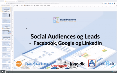 Webinar: Social Audiences og Leads