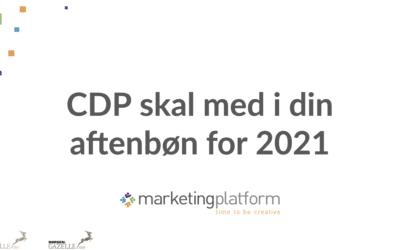 Webinar: CDP skal med i din aftenbøn for 2021